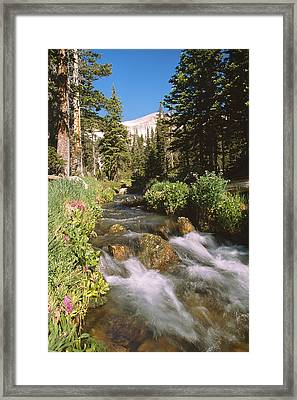 Mitchell Creek Framed Print by Eric Glaser