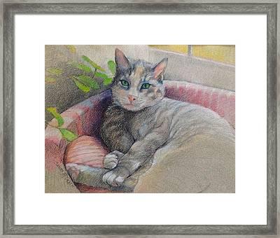 Mitzi Framed Print by Janet McGrath