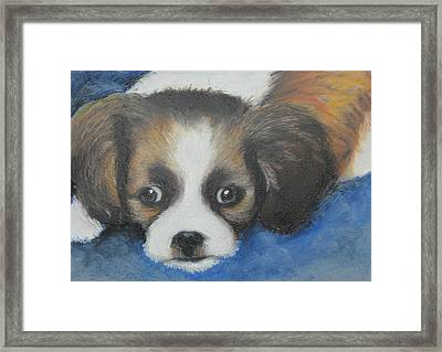 Framed Print featuring the painting Mitzy by Jeanne Fischer
