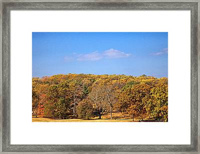 Mixed Fall Framed Print