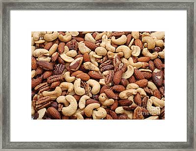 Mixed Nuts Framed Print by Andee Design