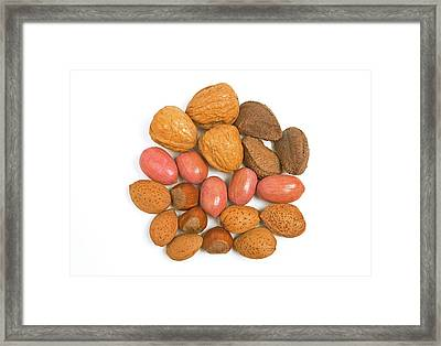 Mixed Nuts Framed Print