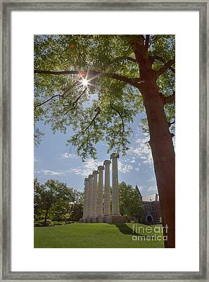 Mizzou Columns Sunflare Framed Print
