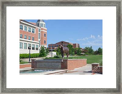 Mizzou Tiger Fountain Framed Print