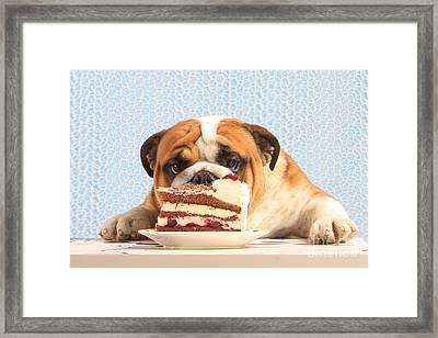 Mmm, Cake Framed Print