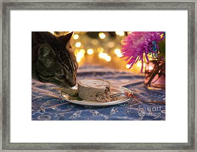 Mmmmmmm Framed Print by Juli Scalzi