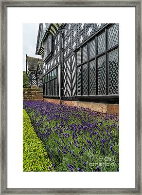 Moat Of Lavender Framed Print by Adrian Evans
