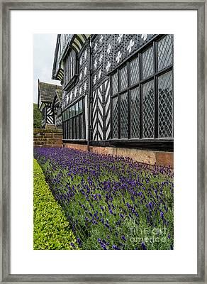 Moat Of Lavender Framed Print