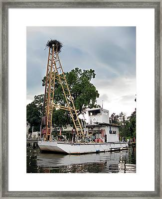 Framed Print featuring the photograph Mobile Osprey Nest by Brian Wallace