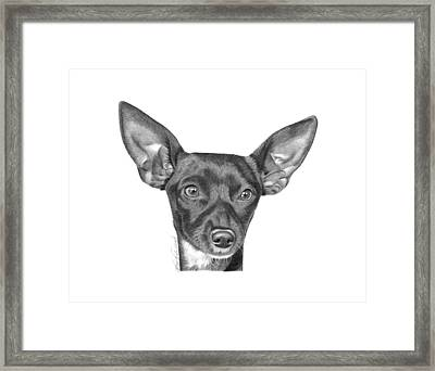 Mocha -036 Framed Print by Abbey Noelle