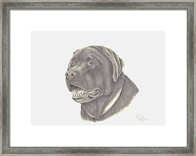 Framed Print featuring the drawing Mocha by Patricia Hiltz