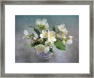 Sweet Mock Orange Blossom Bouquet With Bumble Bee  Framed Print