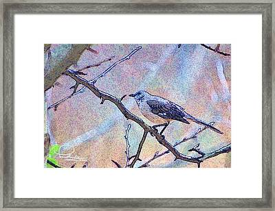 Framed Print featuring the photograph Mocking Bird by Ludwig Keck