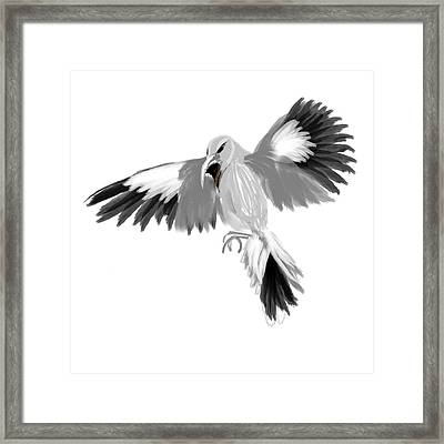 Mockingbird Framed Print