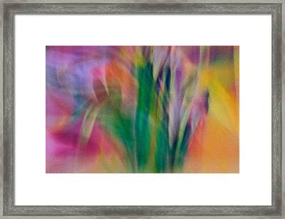 Framed Print featuring the photograph Modern Art Flower Garden by Susan Leggett