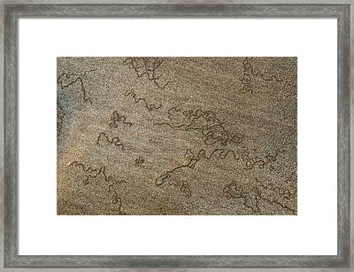 Modern Day Worm Tracks Framed Print by Sinclair Stammers