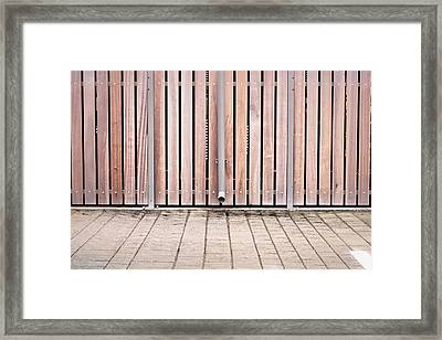 Modern Fence Framed Print by Tom Gowanlock