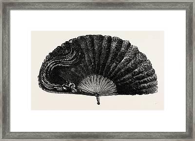 Modern Ostrich Feather Fan Framed Print by English School