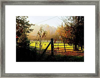 Framed Print featuring the photograph Moffit Bridge  by Daniel Thompson