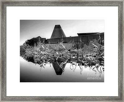 Mog Reflected Bw Framed Print