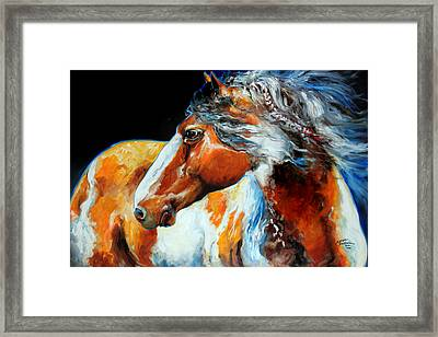 Mohican The Indian War Pony Framed Print by Marcia Baldwin