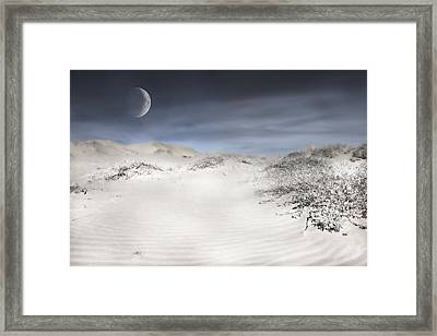 Mojave In Pale Framed Print by Evie Carrier