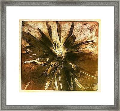 Mojave Sunset Dance Framed Print