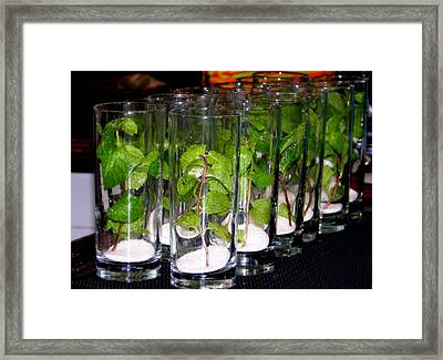 Mojitos In The Making Framed Print by Karen Wiles