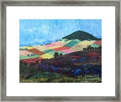 Mole Hill Patchwork - Sold Framed Print