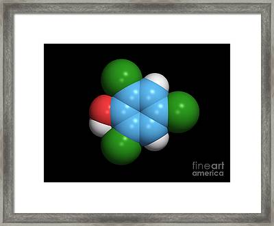 Molecule Of A Component Of Tcp Framed Print by Dr. Tim Evans