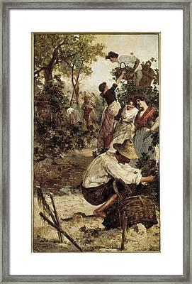 Moles, M.f. Second Half 19th Framed Print by Everett