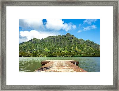Molii Fishpond 1 Framed Print by Leigh Anne Meeks