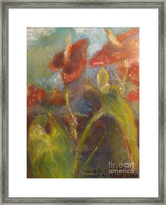 Molokai Anthurium Of Kaunakaki Framed Print
