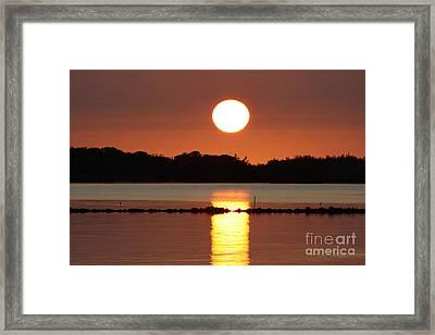 Molokai Fishpond Framed Print