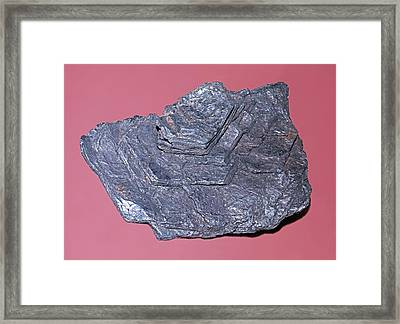 Molybdenite Framed Print