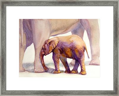 Mom And Baby Boy Elephants Framed Print