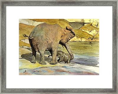 Mom And Cub Elephants Having A Bath Framed Print