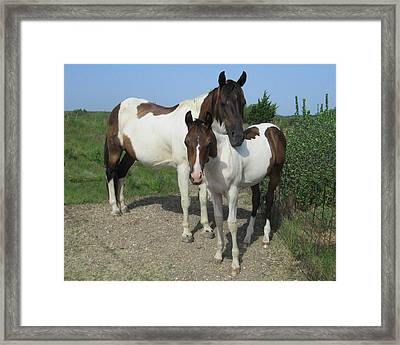 Mom And Son Framed Print by Rosalie Klidies