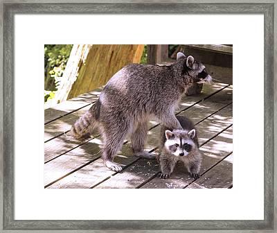 Mom Get Off My Back Framed Print