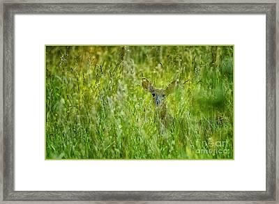 MOM Framed Print by Timothy J Berndt