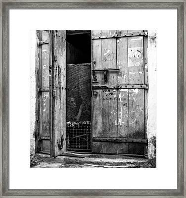 Mombassa Senior Framed Print