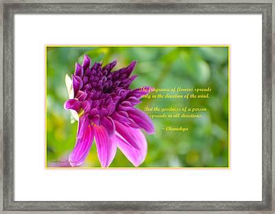 Moment Of Bloom Framed Print by Sonali Gangane