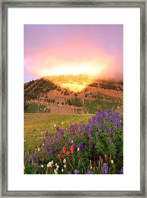 Moment Of Illumination Framed Print by Johnny Adolphson