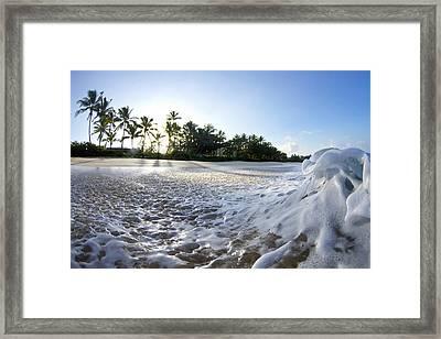 Momentary Foam Creation Framed Print by Sean Davey