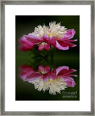Moments Of Reflection Framed Print by Inspired Nature Photography Fine Art Photography