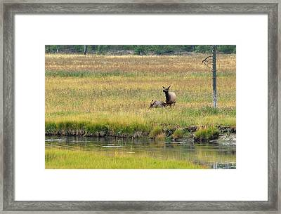 Framed Print featuring the photograph Moments On The Madison by Yeates Photography