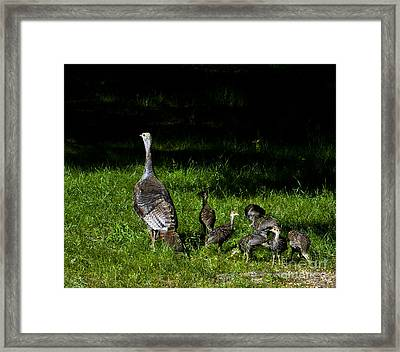 Mom..he Is Looking At Us Again Framed Print by Timothy J Berndt