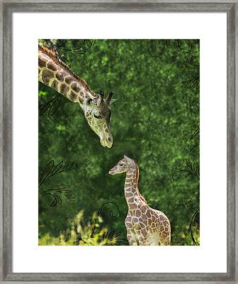 Momma Loves Me Framed Print by Marianne Campolongo