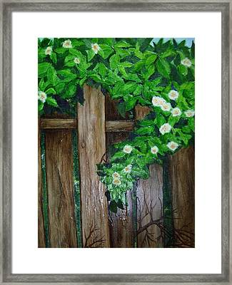 Mom's Backyard Cedar Fence Framed Print by Jan Wendt