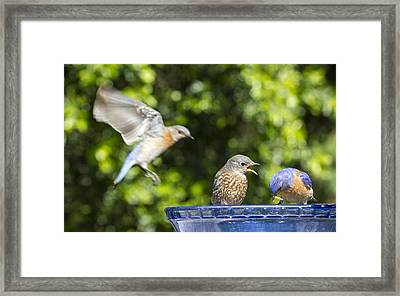 Moms Coming Framed Print by Jean Noren